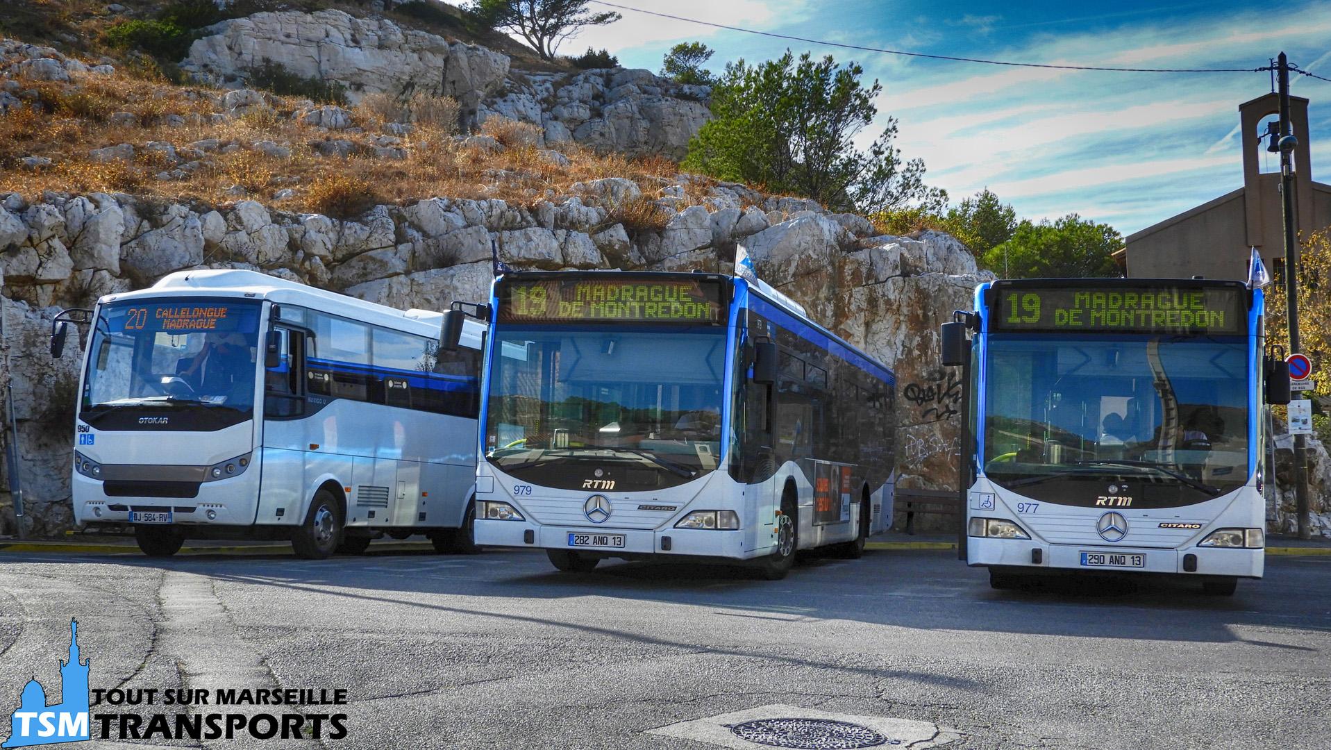 Otokar Navigo U SUMA n°950 et 2 Mercedes Benz Citaro 1 RTM n°979 et 977