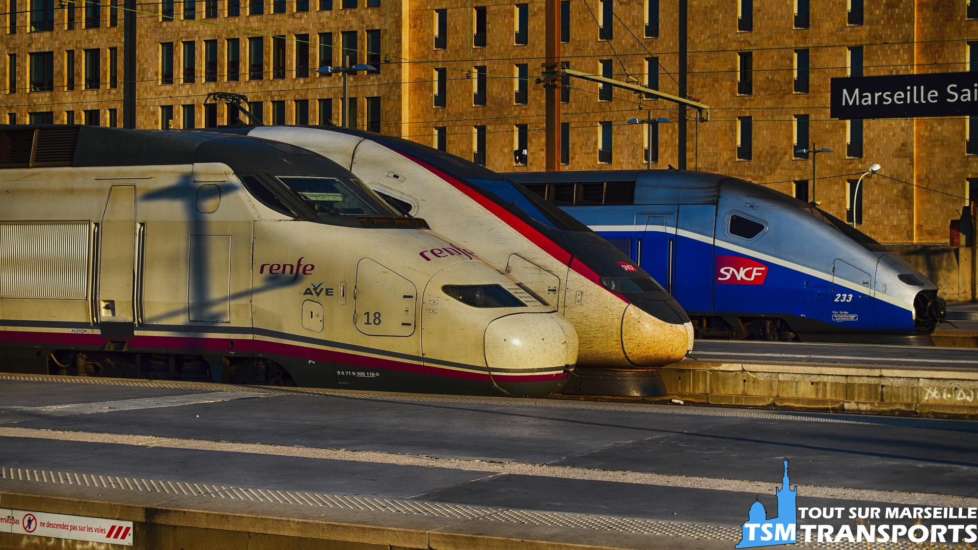 Nous voici en #gare saint Charles à une heure matinale et au départ, une brochette de TGV, dans l'ordre de gauche à droite : L'AVE Renfe SNCF quotidien (n°18), Le TGV n°240 et le TGV n°233