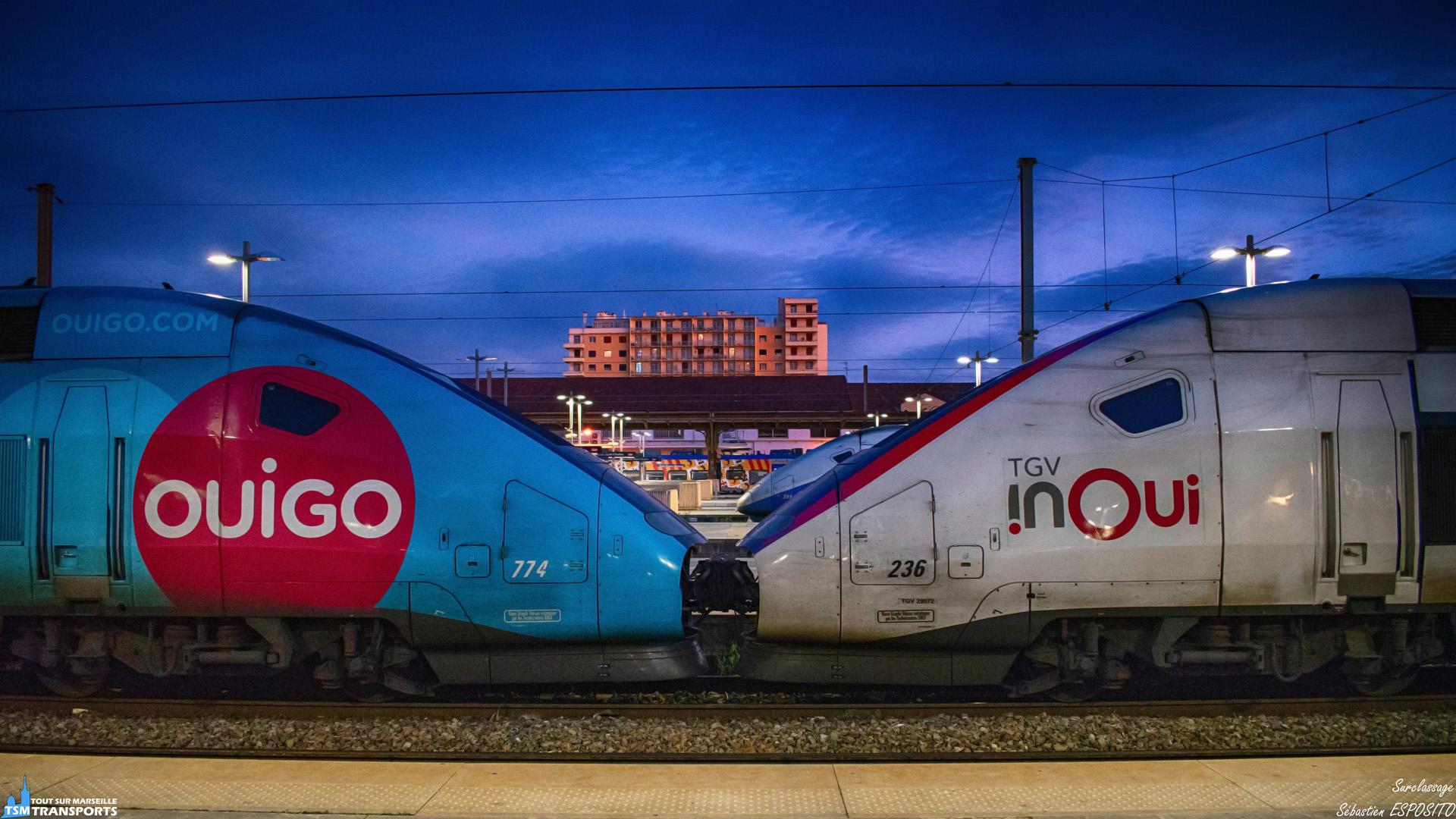 Combo peu commun en gare Saint Charles en fin de journée, où cette UM de TGV Ouigo/Inoui est à quai sous un ciel bleu électrique. . ℹ️ Alstom TGV Dasye Ouigo N°774. . ℹ️² : Alstom TGV Duplex SNCF Inoui N°236. . 📍 Gare Saint Charles, Square Narvik, 1er arrondissement de Marseille. . 📸 Nikon D5600. . 📷 Nikkor 18-55mm. . 📅 12 Février 2019 à 18:27. . 👨 Sébastien ESPOSITO accompagné de @lordregio13 .