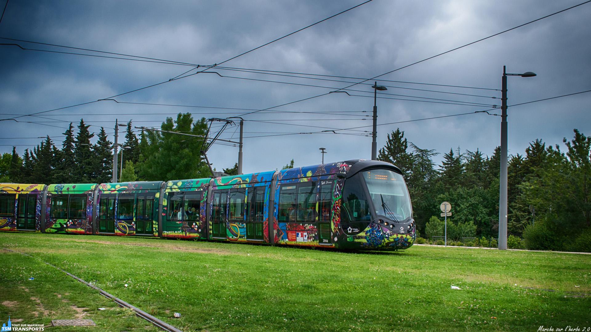 Arrivée tout en finesse pour les rames Citadis du réseau Montpelliérain, sur l'herbe verte de la station Mosson, ce tram de la ligne T3 s'apprête à effectuer son terminus sur la voie centrale et devant un buttoir minimaliste. . ℹ️ Alstom Citadis 402 Tam n°2084. . 📍 Rue Peter Benenson, 34080 Montpellier. . ↔️ T3 : Lattes Centre - Mosson. . 📸 Nikon D5600. . 📷 Nikkor 18-55mm. . 📅 9 Juin 2019 à 16:58.